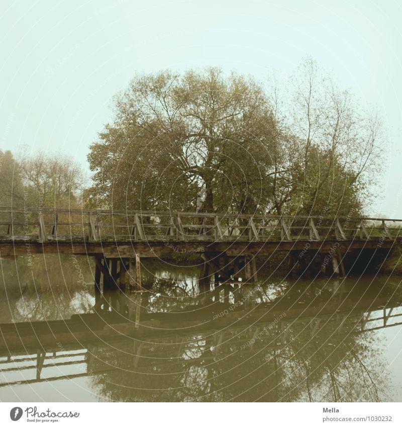 Bye, dear Anne! And don't tear down all bridges. ;-) Environment Landscape Water Tree Lakeside River bank Pond Bridge Wooden bridge Lanes & trails
