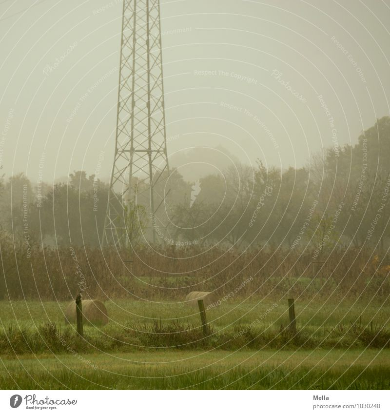 still air Technology Energy industry Electricity pylon Environment Nature Landscape Climate Fog Tree Grass Meadow Pasture Natural Gray Green Calm Fence