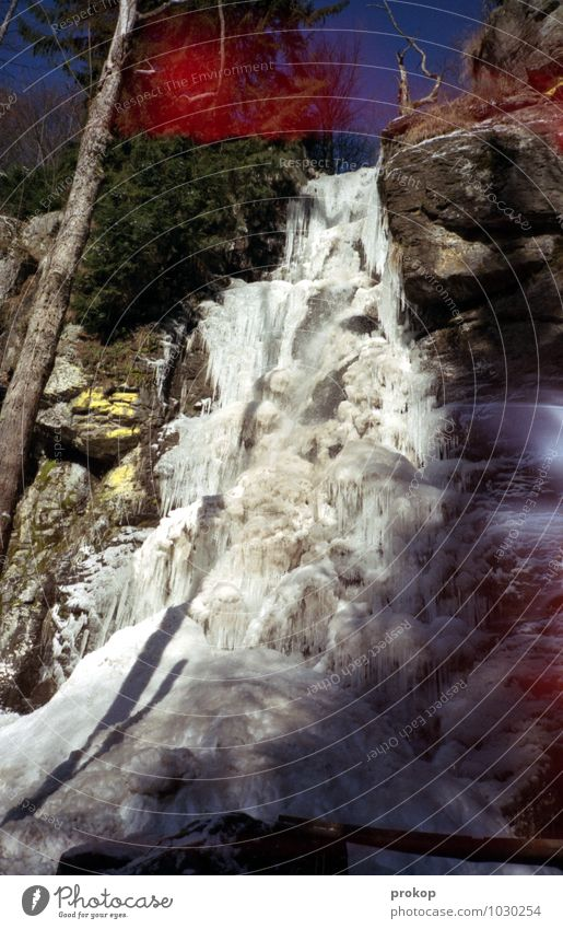 Waterfall [Japan style] Environment Nature Landscape Sky Sunlight Winter Beautiful weather Ice Frost Snow Plant Tree Mountain Cold Cool (slang) Power Esthetic