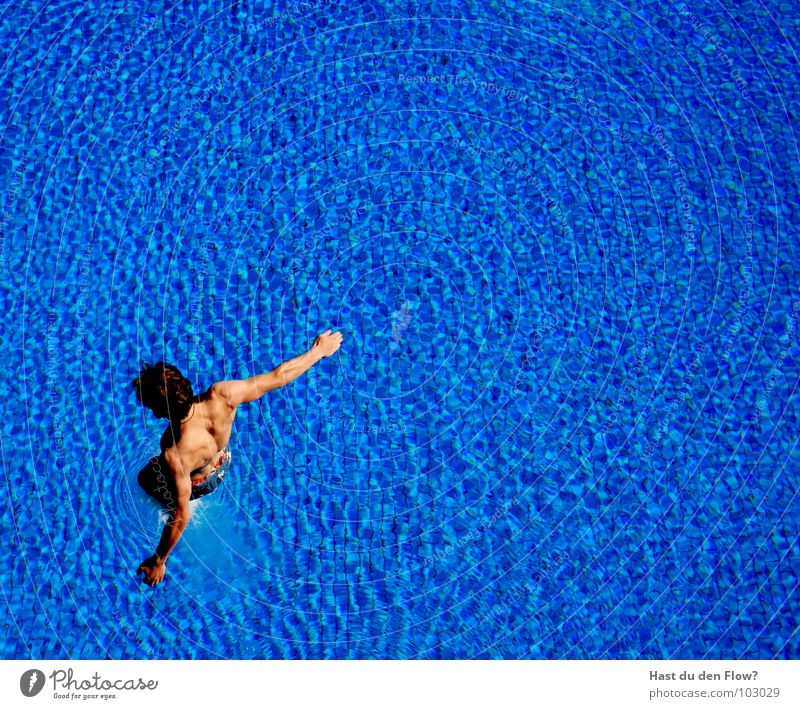 still dry Man Swimming pool Springboard Jump Dive Open-air swimming pool Summer Good mood Swimming trunks Aquatics Blue Guy Water plunge pools diving pools