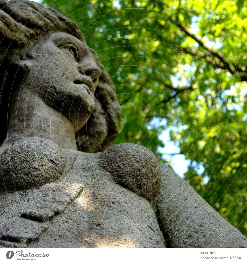 The inside counts Human being Tree Leaf Woman Motionless Landmark Monument Nature Stone petrified Chest Looking Amazon Snapshot