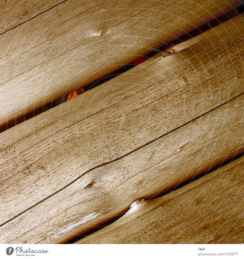 Until the beams bend Wood Brown Plank Tree Bird's-eye view Autumn Nature Freedom Wood grain Wooden board Structures and shapes Joist Natural