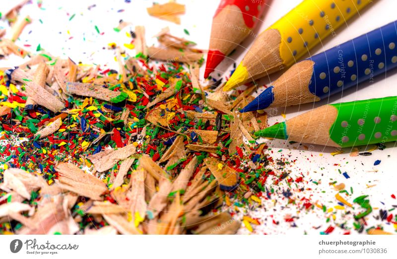 Blue Green Colour Red Joy Environment Yellow Wood Moody Art Leisure and hobbies Design Office Point Creativity Idea