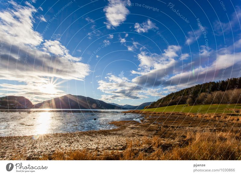Sky Nature Vacation & Travel Plant Summer Water Sun Landscape Clouds Far-off places Forest Mountain Autumn Grass Coast Freedom