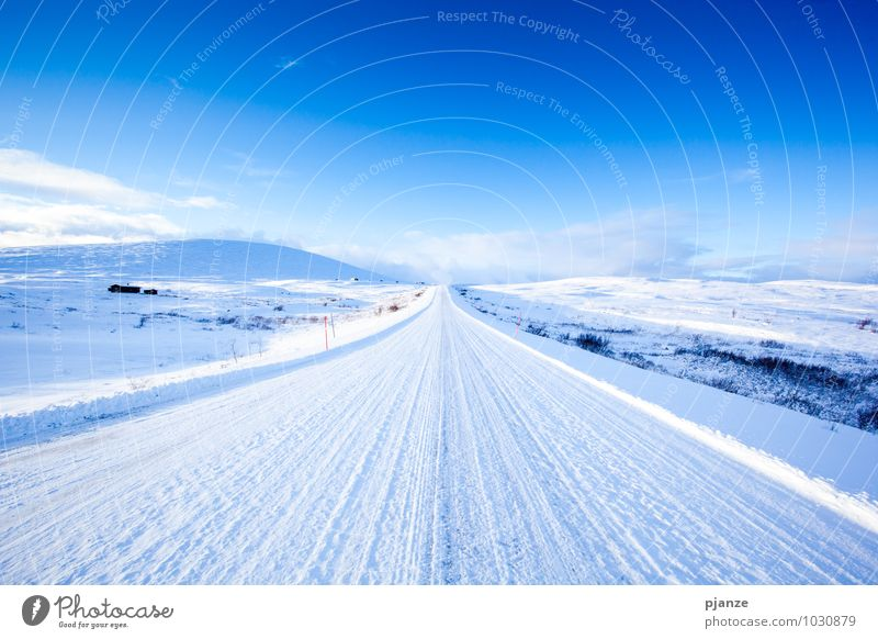 freeway Vacation & Travel Adventure Far-off places Freedom Winter Snow Winter vacation Nature Landscape Sky Cloudless sky Sun Sunlight Beautiful weather