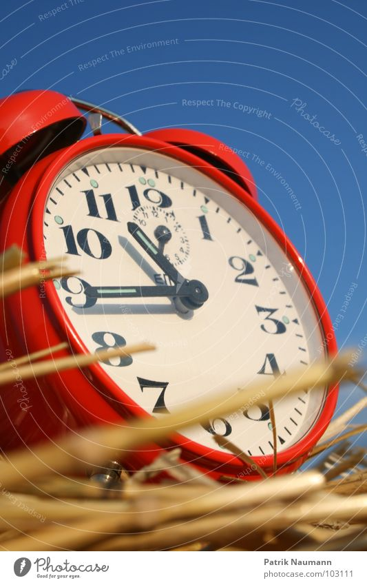 Harvest time III Alarm clock Clock Tick tock Red Digits and numbers Straw Agriculture Rural Harmonious Clock hand Sky Blue Contrast Exterior shot