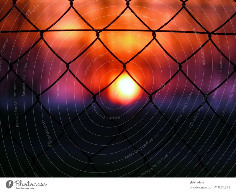 Off/Locked Environment Kitsch Sunset Sunlight Wire netting fence Fence Confine Closed Exclude Wire fence Exterior shot Evening Twilight Back-light