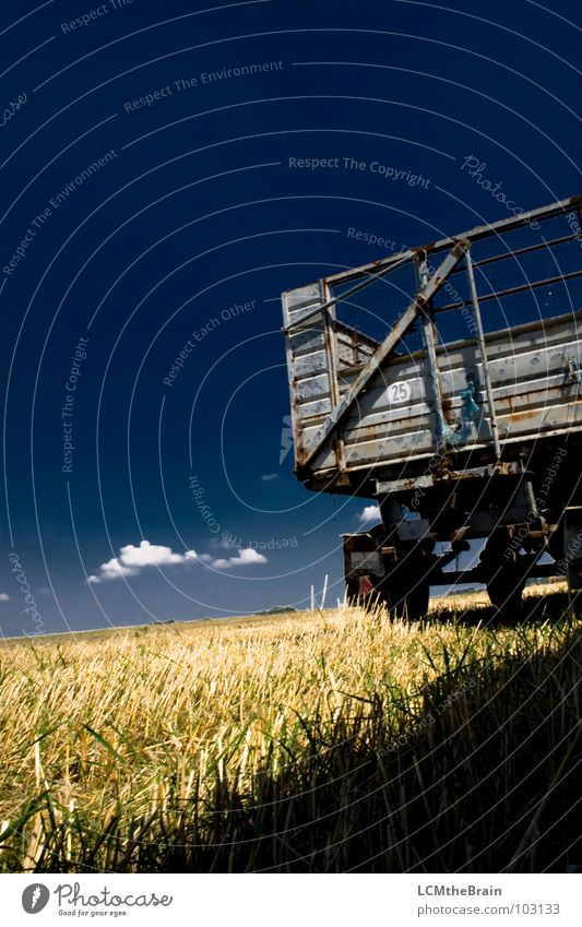 hay wagon Summer Straw Grass Field Blue Yellow Agriculture Clouds Exterior shot Calm Nature Sky Landscape Harvest Trailer Copy Space top Blue sky