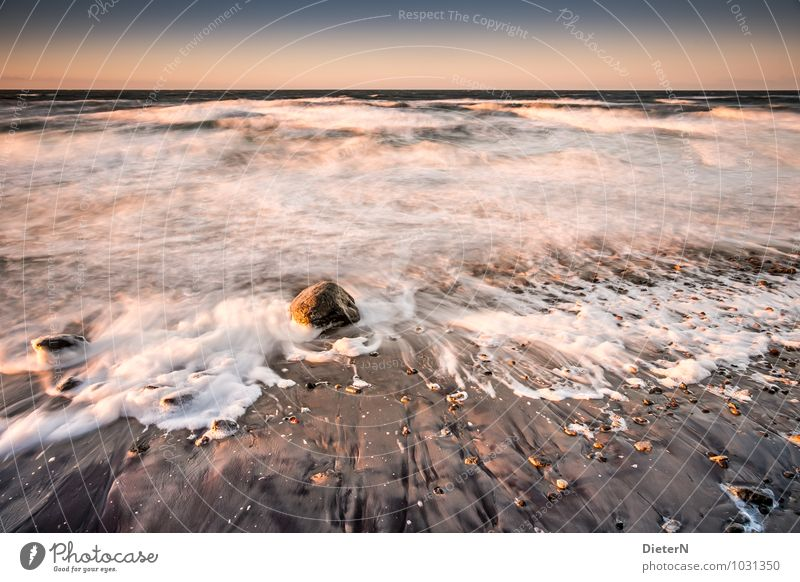 Rock in the surf Beach Ocean Waves Winter Landscape Earth Sand Water Sky Cloudless sky Clouds Horizon Wind Gale Coast Baltic Sea Brown Yellow Gold White
