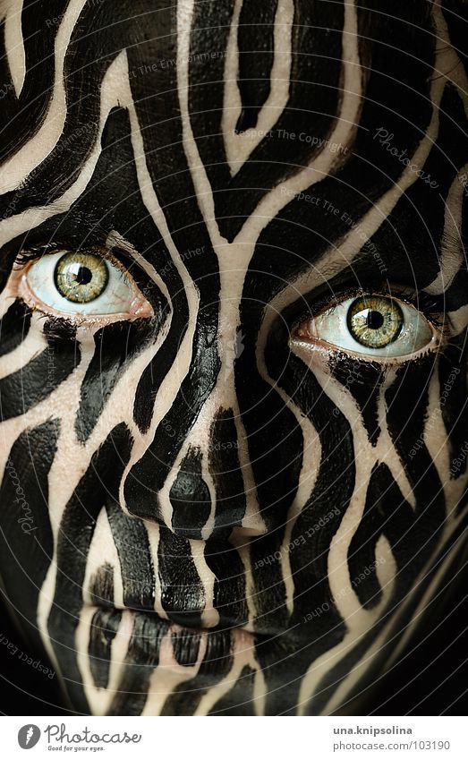 Colour Black Eyes Exceptional Stripe Pelt Mask Bizarre Striped Section of image Painted Partially visible Camouflage Tiger skin pattern Detail of face Camouflage colour