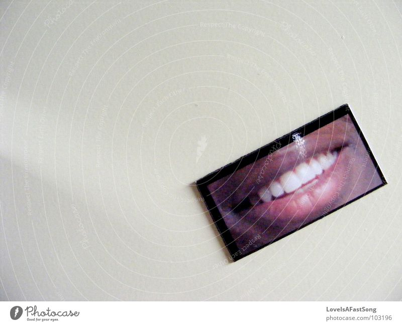 smile Grinning Magnet Signage black white teeth picture face happy lips