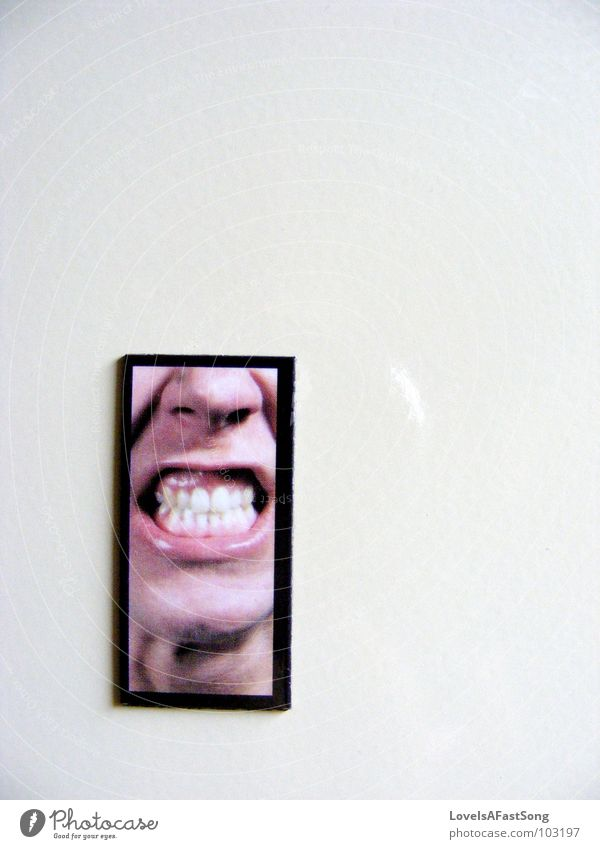angry Magnet Signage black white frame face teeth Chinese lips nose silly picture