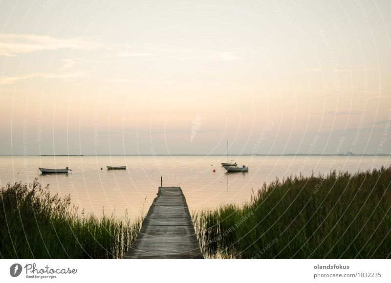 An old wooden jetty with anchored small boats Beautiful Summer Ocean Nature Landscape Sky Coast Baltic Sea Lake Watercraft Old Small Green White Tradition