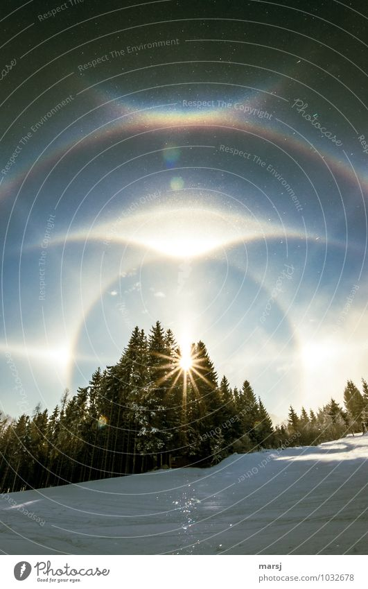 22° ring with circumzenithal arch Harmonious Senses Relaxation Calm Meditation Vacation & Travel Freedom Winter Snow Winter vacation Weather Beautiful weather