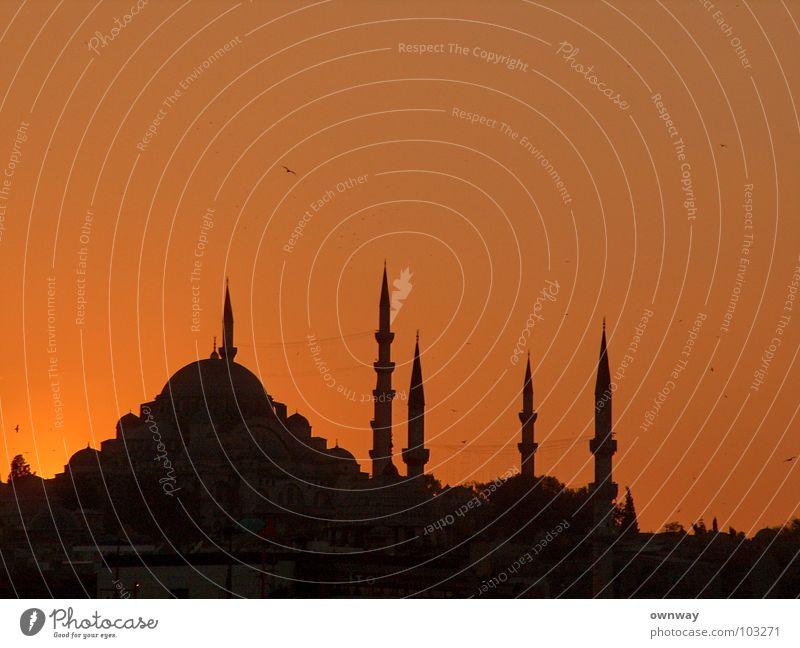 Mosque in Istanbul Sunset Dark Minaret Religion and faith Islam Moslem Turkey Asia Europe The Bosphorus Historic Evening