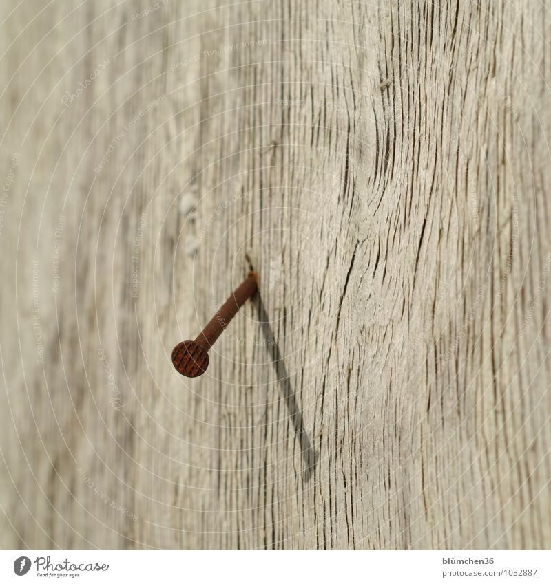 Old Wood Metal Construction site Firm Wooden board Rust Connection Steel Craft (trade) Sustainability Weathered Nail Unwavering Wood grain Beat