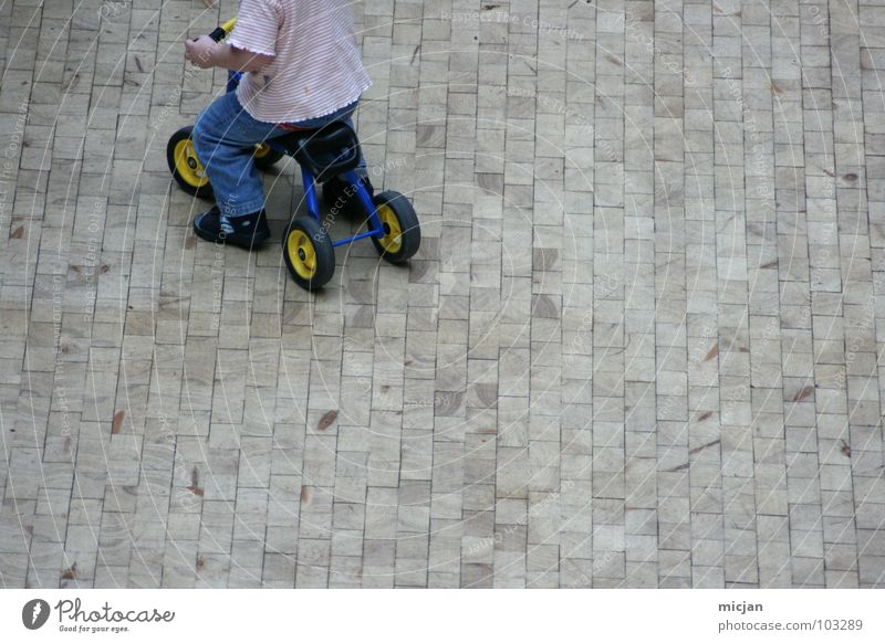 Child White Red Joy Street Playing Above Boy (child) Gray Small Stone Funny Wild animal Places Transport Speed