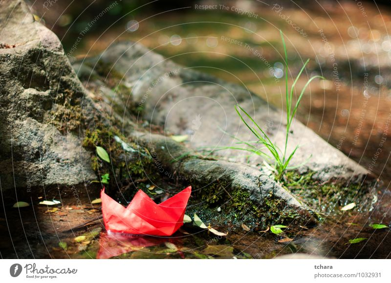The big Trip starts with small steps Joy Freedom Nature Wind Grass Leaf Rock River Paper Toys Red Idea Nautical Vessel Paper boat Water Origami Orange