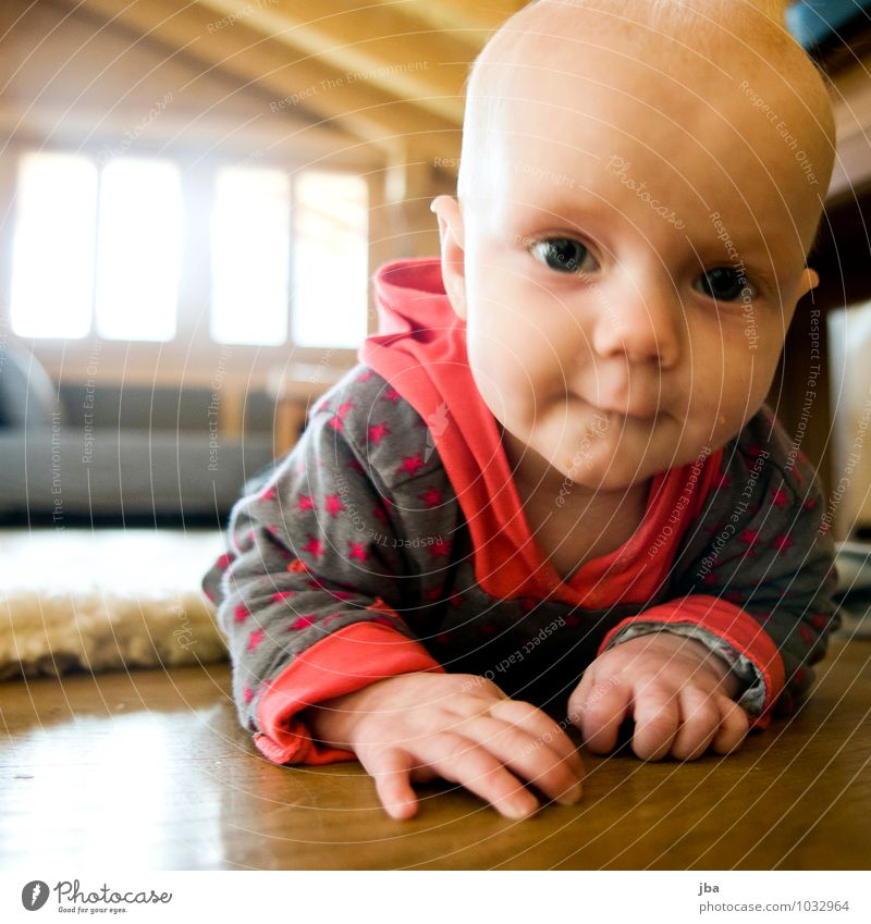 detect sb./sth. Contentment Living room Movement Child Study Human being Baby Toddler Infancy 1 0 - 12 months Sweater Observe Fitness Crawl Smiling Looking