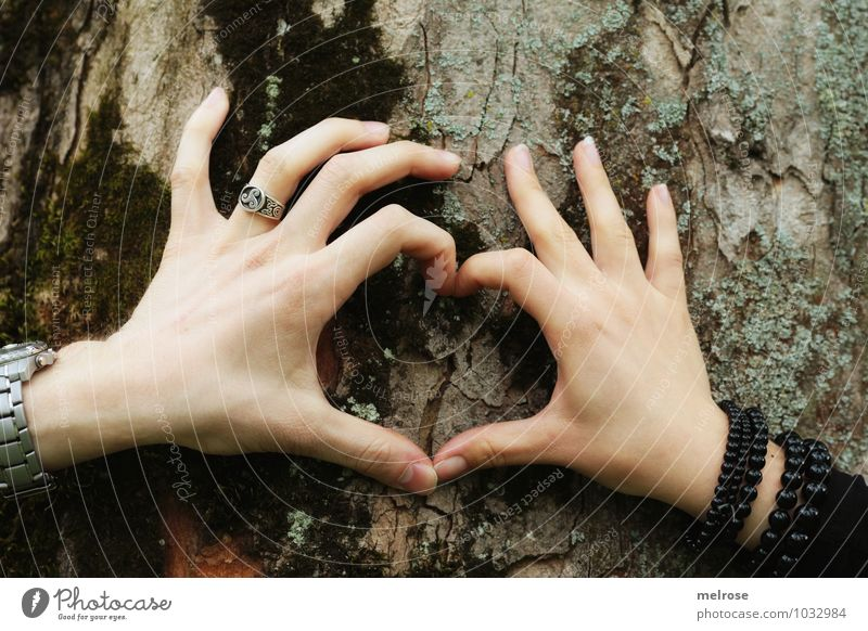 you and I Happy Valentine's Day Masculine Feminine Woman Adults Man Couple Hand Fingers 2 Human being 18 - 30 years Youth (Young adults) Environment Spring Tree