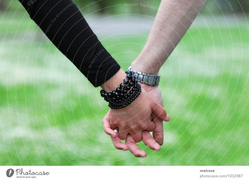 Human being Nature Youth (Young adults) Green White Summer Young woman Hand Young man 18 - 30 years Black Adults Emotions Meadow Love Style
