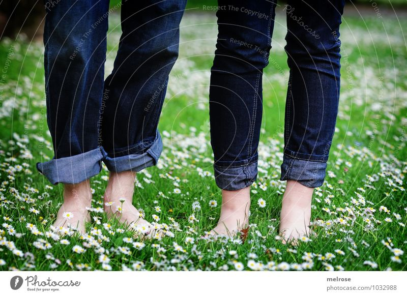 feel-good oasis Lifestyle Young woman Youth (Young adults) Young man Couple Legs Feet Knee 2 Human being 18 - 30 years Adults Nature Summer Beautiful weather