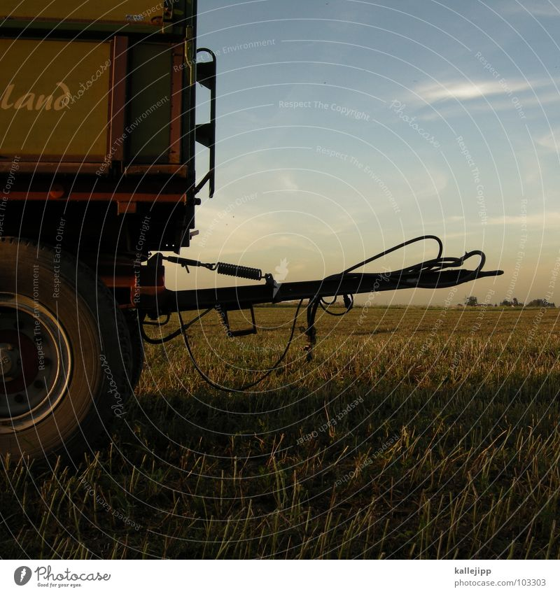 Work and employment Field Grain Agriculture Americas Harvest Tradition Equipment Home country Tractor Carriage Followers Stubble field Farm worker Clutch