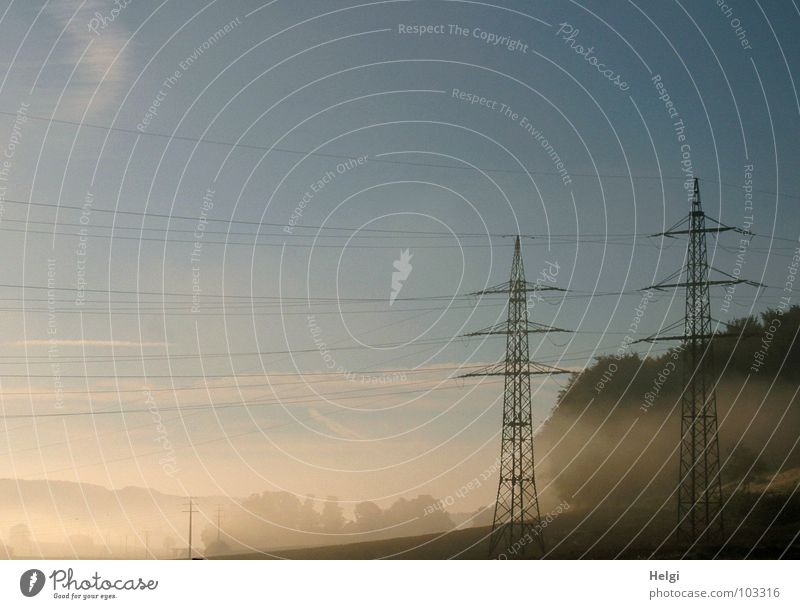 Sky Tree Sun Summer Clouds Forest Field Fog Energy industry Electricity Cable Electricity pylon High voltage power line Morning fog Fog bank High fog