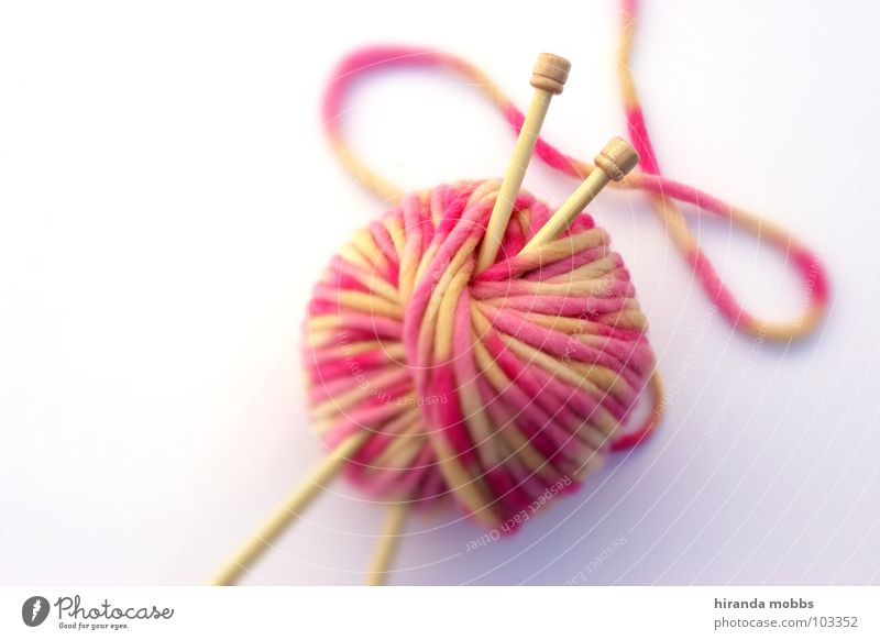 White Joy Wood Warmth Art Leisure and hobbies Pink Point Soft Things Physics Make Craft (trade) Still Life Sweater Cuddly