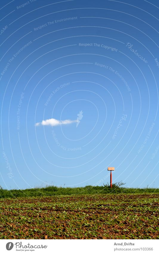 Sky Green Blue Summer Clouds Meadow Grass Brown Field Signs and labeling