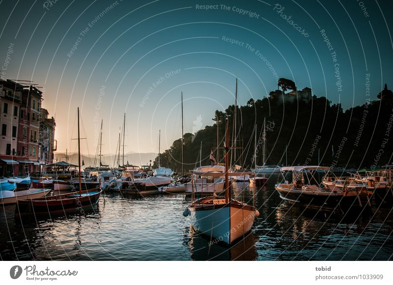 Portofino Pt.2 Cloudless sky Horizon Summer Beautiful weather Forest Hill Waves Bay Village Old town Deserted Tourist Attraction Boating trip Sport boats Yacht