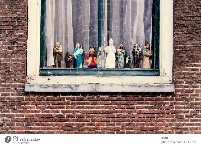 Green Calm Joy Window Religion and faith Exceptional Group Brown Facade Flat (apartment) Leisure and hobbies Living or residing Decoration Authentic Stand Crazy