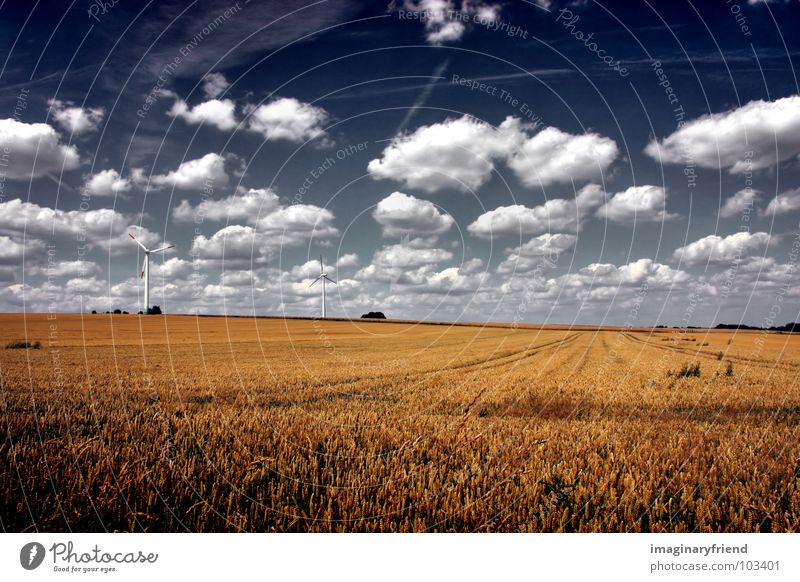 Sky Summer Clouds Meadow Landscape Field Farm Grain Wind energy plant Countries Agriculture Wheat July
