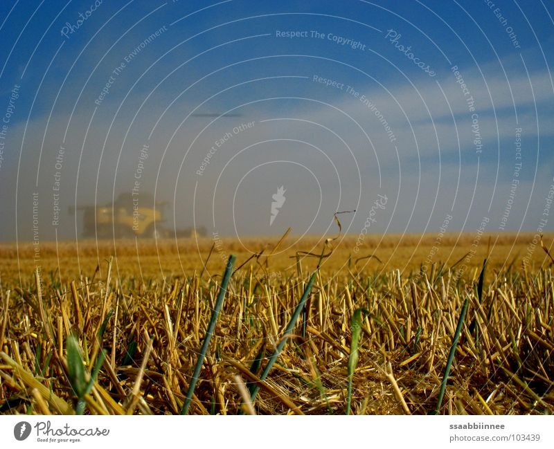 Fata Morgana? Combine Summer Dust Physics Power Force Cornfield Harvest Warmth Fog Sky Technology
