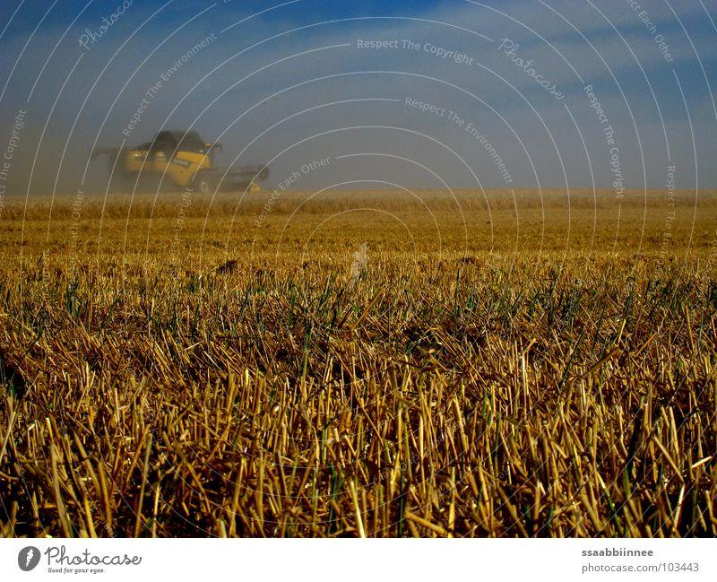 Hot summer Physics Dust Combine Harvest Summer's day Power Force Warmth Sky Fog Grain