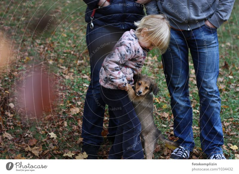 Dog Human being Woman Child Man Animal Adults Baby animal Autumn Small Garden Friendship Together Park Family & Relations Infancy