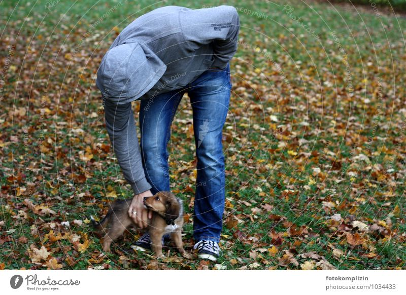 small and large Man Adults 1 Human being Pet Dog Baby animal Touch Together Small Cute Safety Protection Safety (feeling of) Agreed Love of animals