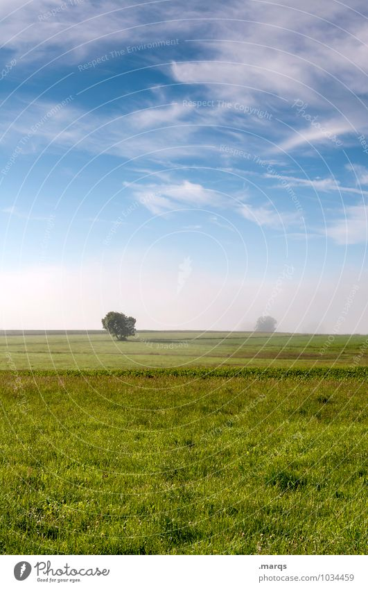 rural Environment Nature Landscape Elements Sky Clouds Horizon Spring Summer Climate Beautiful weather Fog Tree Meadow Field Relaxation Simple Fresh Natural