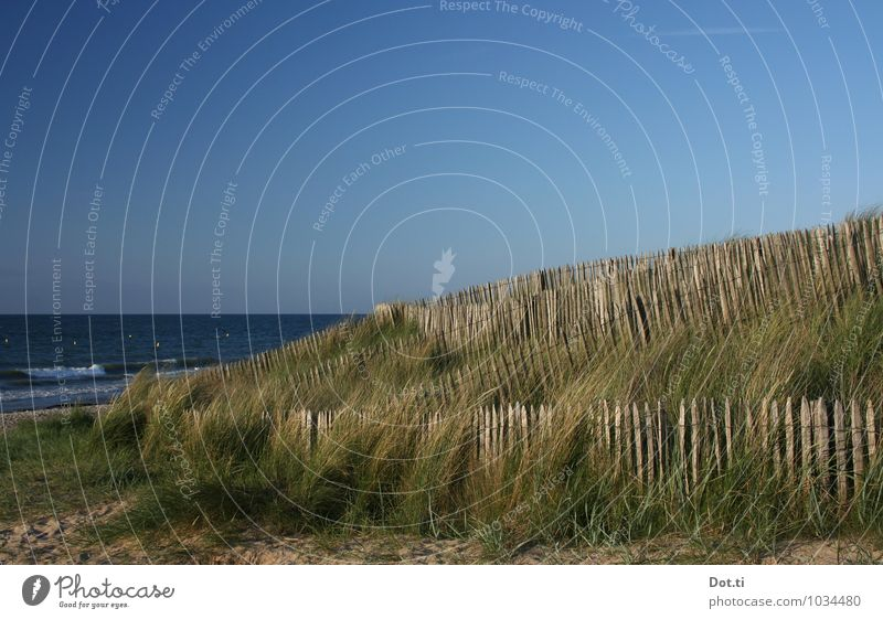 les dunes Vacation & Travel Summer vacation Ocean Nature Water Sky Horizon Beautiful weather Grass Coast Beach Blue Fence dune protection Beach dune Fastening