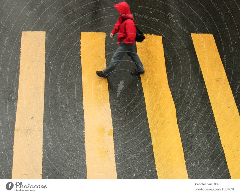to the old grandmother Zebra crossing Pedestrian Yellow Asphalt Transport Town Going Traverse Concreted Tar Stripe Wet Rain Red Hooded (clothing) Bag