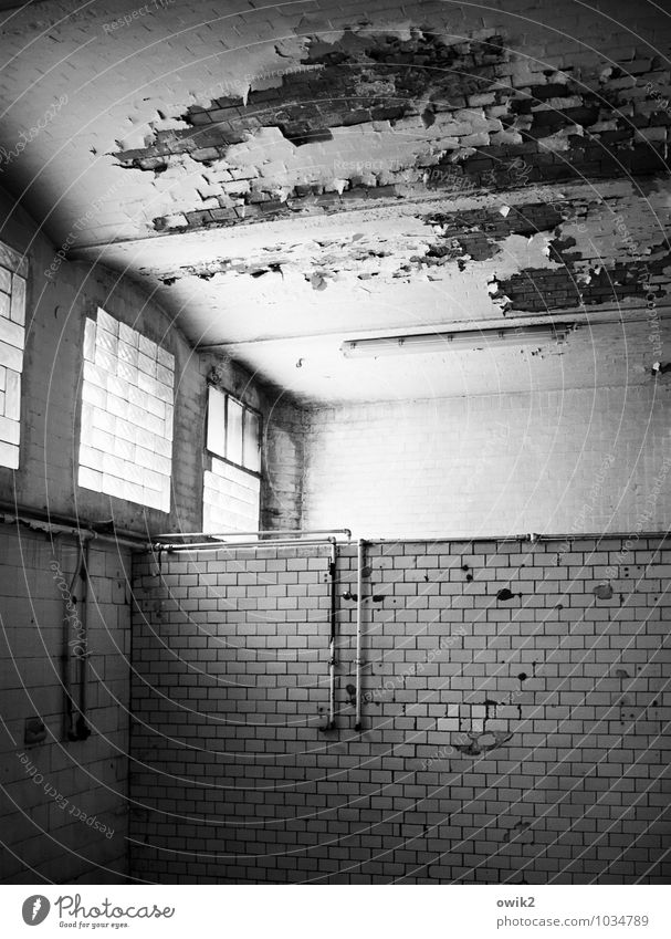 bathroom Wall (barrier) Wall (building) Facade Window Room Tile Iron-pipe Water pipe Stone Glass Metal Old Historic Broken Trashy Gloomy Decline Past Transience