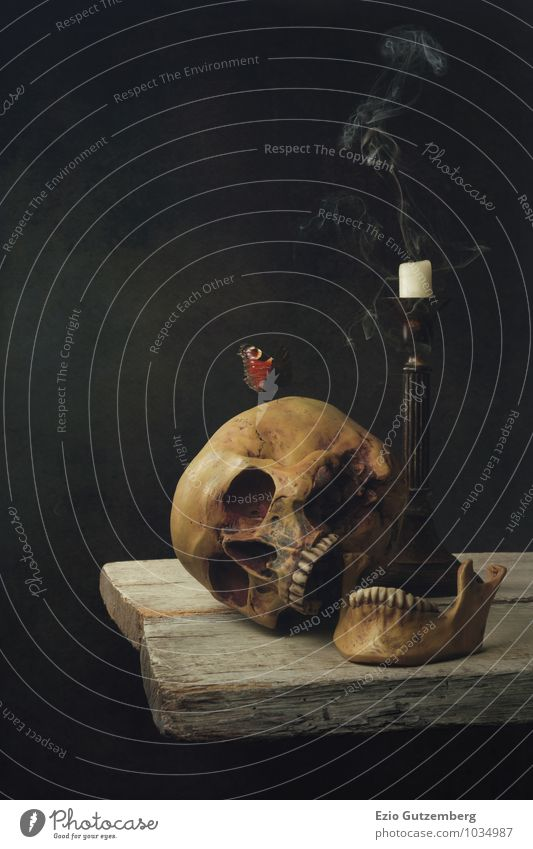 Human being Life Head Transience Living thing Symbols and metaphors Teeth Still Life Paddle