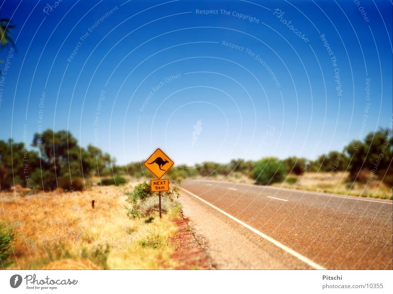 Sun Summer Street Road traffic Signs and labeling Transport Adventure Bushes Desert Hot Traffic infrastructure Beautiful weather Australia Blue sky Shopping malls