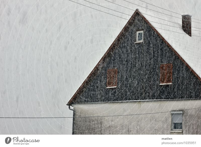 Sheep cold Village Deserted House (Residential Structure) Wall (barrier) Wall (building) Facade Window Roof Chimney Dark Brown Gray White Snowfall