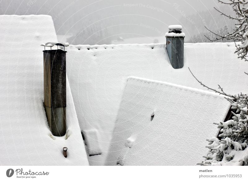 ridge Village Deserted House (Residential Structure) Roof Chimney Black White Snowfall Colour photo Exterior shot Roof ridge Idyll Cozy Calm Winter mood