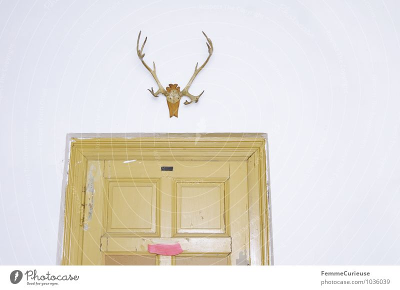 Hanging antlers. House (Residential Structure) Castle Building Wall (barrier) Wall (building) Animal Dead animal Bizarre Living or residing Antlers Suspended