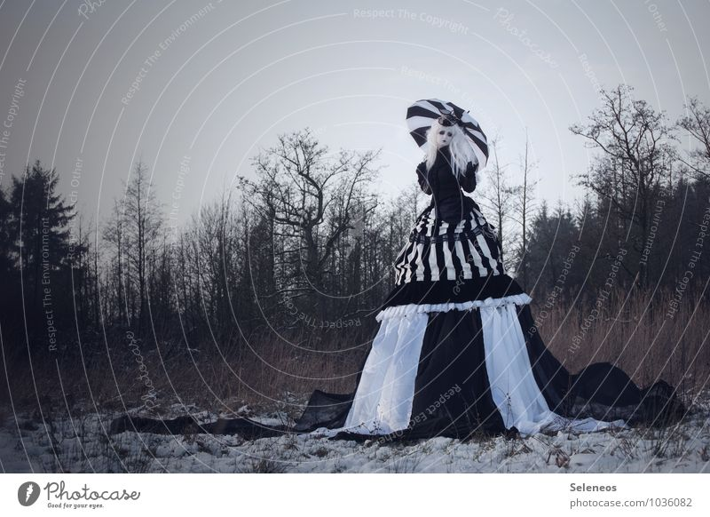snow white Carnival Hallowe'en Human being Feminine Woman Adults 1 Subculture Rockabilly Nature Cloudless sky Winter Ice Frost Snow Tree Meadow Field Fashion