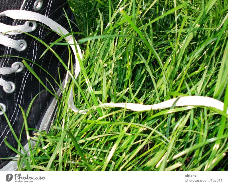 White Green Summer Black Meadow Grass Spring Happy Footwear Clothing Fresh Chucks Sneakers Stitching Shoelace