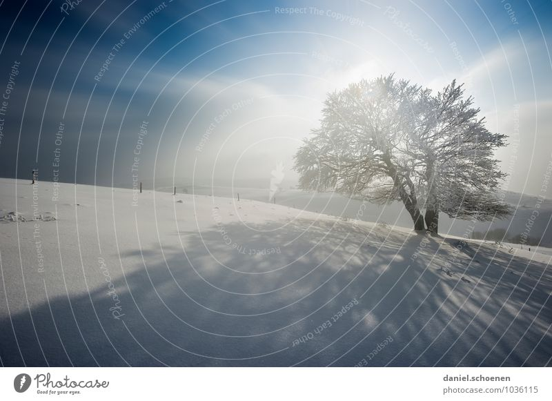 Nature Blue White Tree Landscape Winter Mountain Snow Bright Ice Hiking Wind Frost Winter vacation