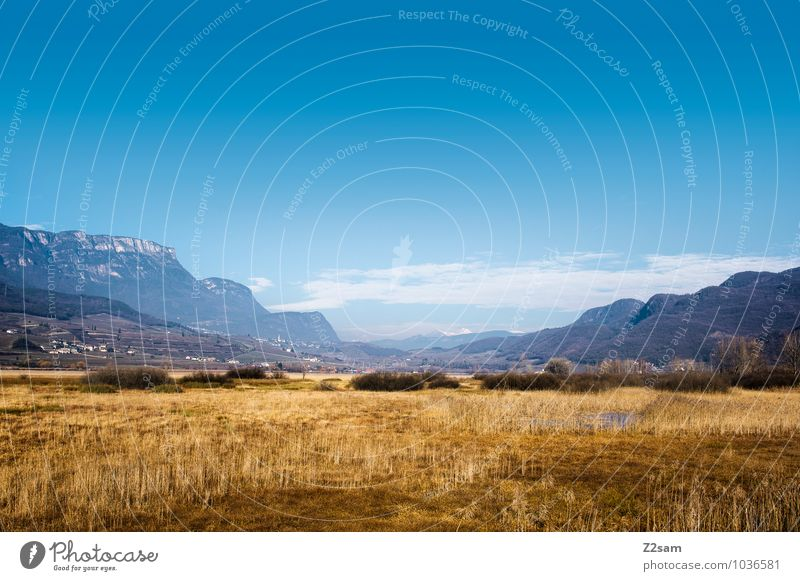 Cold steppe Vacation & Travel Adventure Sightseeing Mountain Environment Nature Landscape Sky Autumn Winter Beautiful weather Grass Meadow Alps Loneliness